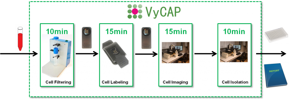 Vycap cell isolation method
